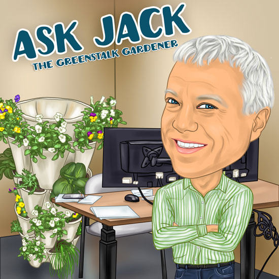 Ask Jack: Dealing with Mildew